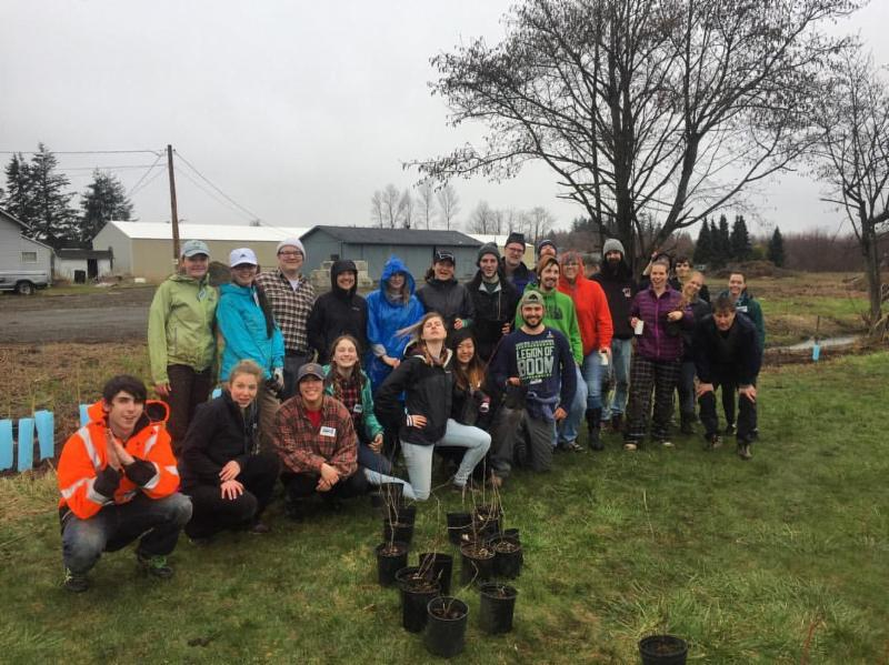The Crystal Creek team and NSEA planting 200 new trees in Whatcom County